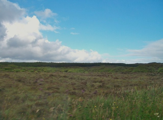 Blanket bog and forestry plantations north of the R232