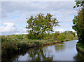 SJ6150 : Canal and farmland west of Ravensmoor, Cheshire by Roger  Kidd