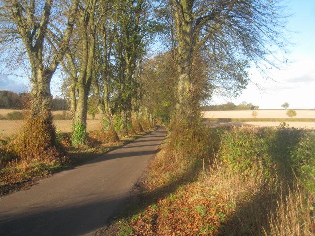 Malshanger Lane