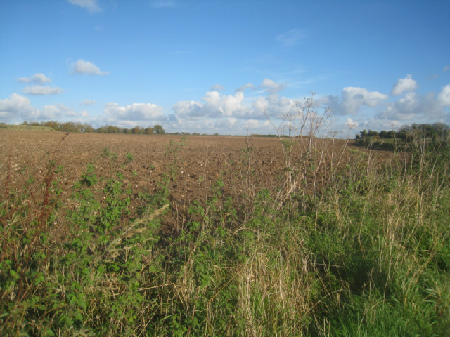 Big Field (78.5 acres)