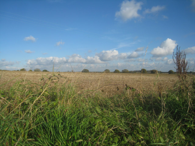 Looking into Kents Field (41 acres)