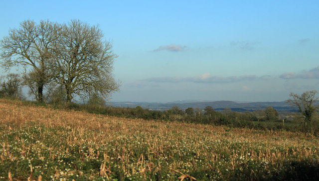 2012 : North east from Copplesbury Lane