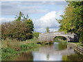 SJ6151 : Bethills Bridge north-west of Ravensmoor, Cheshire by Roger  Kidd