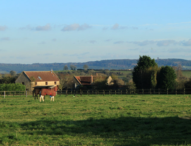 2012 : Pasture near Higher Green's Combe Farm