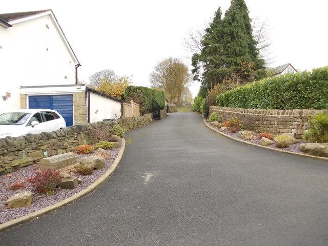 Track - Carlton Lane