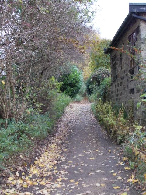 Bridleway - Moorland Avenue
