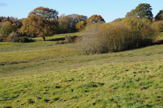 Farmland at Gwehelog