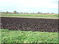 TL3184 : Farmland at Hollow Head near Ramsey by Richard Humphrey