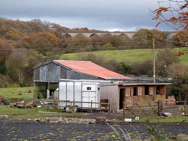 Tod Hill Farm