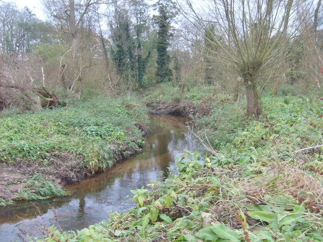 Smestow Brook Scene
