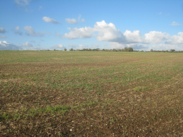 View across Teddys Field (29.5 acres)