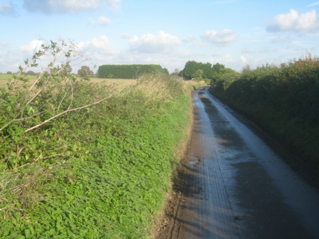 Lane west of Wootton St Lawrence