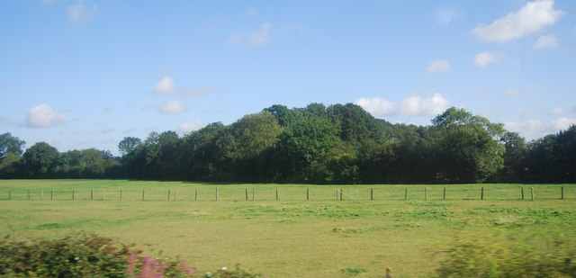 Farmland near Queen Street
