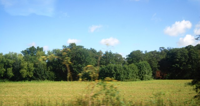 Farmland and woodland