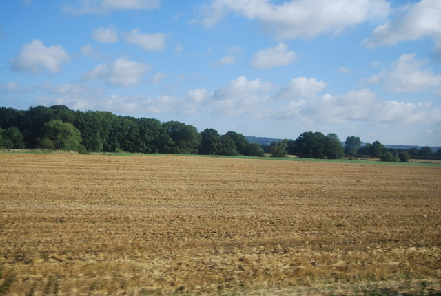 A field of stubble
