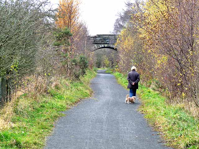 Bridge over the Lanchester Valley Railway Path