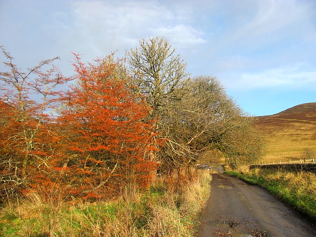 Road to Broughton Hope