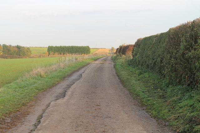 Track East on Metheringham Heath