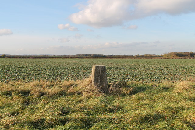 Trig Point TP5857