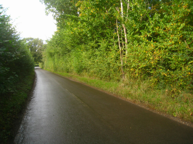 Heading north from Steventon