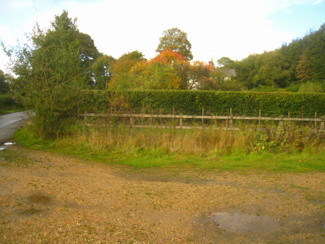 Access to Ashe Park Copse