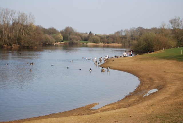 Feed the birds, Barden Lake