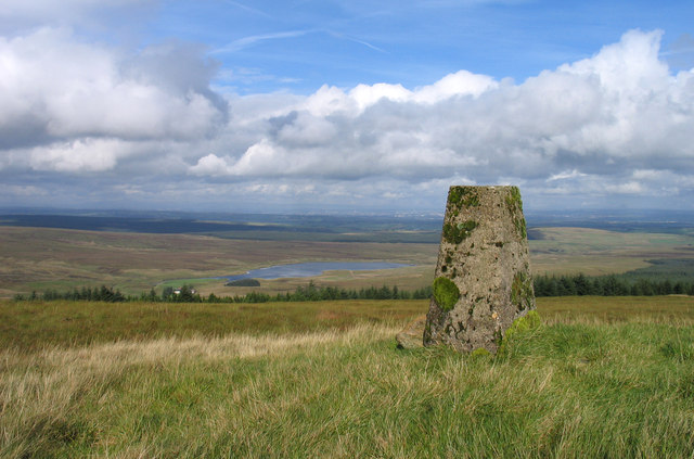 Trig point at summit of Nutberry Hill