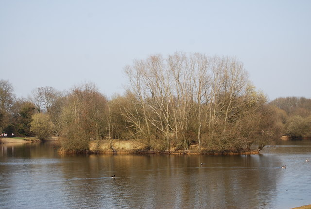 Island in Barden Lake