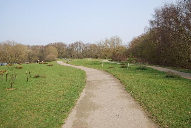 Footpath, Haysden Country Park