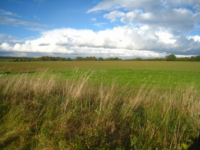 Fields by the Wayfarer's Walk