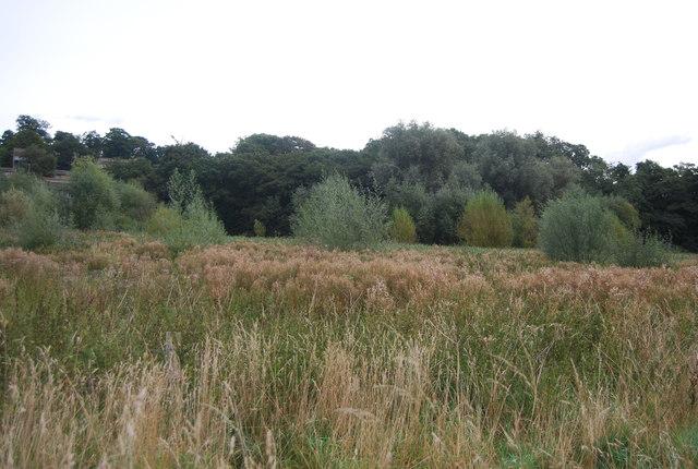 Belstead Brook Park