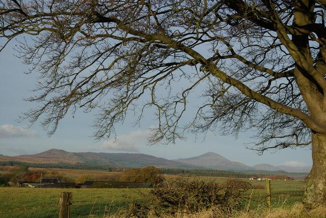 View over Kepculloch towards Ben Lomond