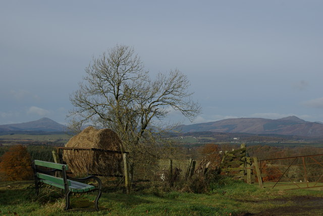 Roadside bench above Easter Culbowie