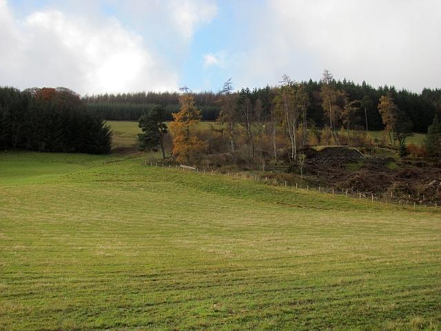 Woodland, Stobo