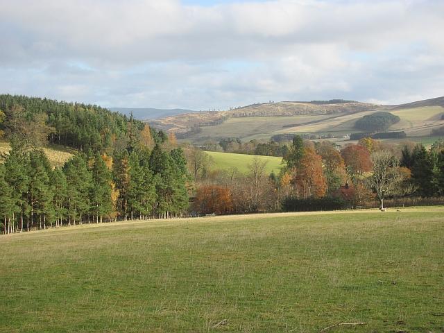 Field, Stobo Hope