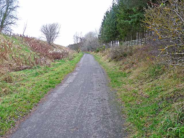 Lanchester Valley Railway Path