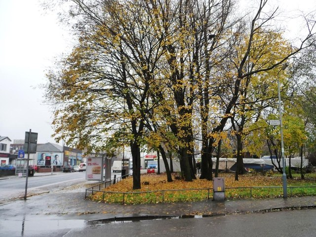 A splash of autumn colour, Shettleston