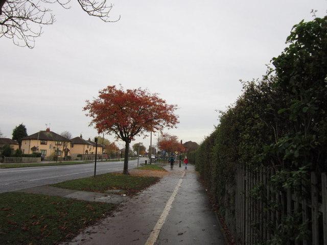 Marfleet Lane, Hull