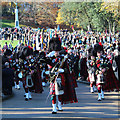 TQ8110 : 1066 Pipes and Drums by Oast House Archive