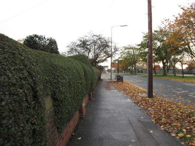 Preston Road, East Hull
