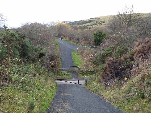 Lanchester Valley Railway Path crossing Knitsley Lane