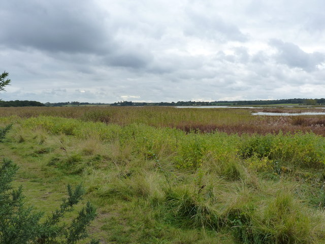 Footpath around Snape Warren