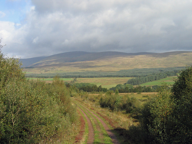 Forestry road entering Bannachra Woods