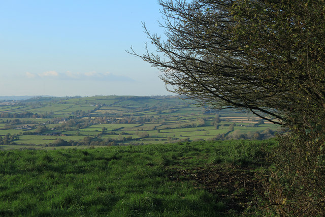 2012 : North west from the lane to Spargrove