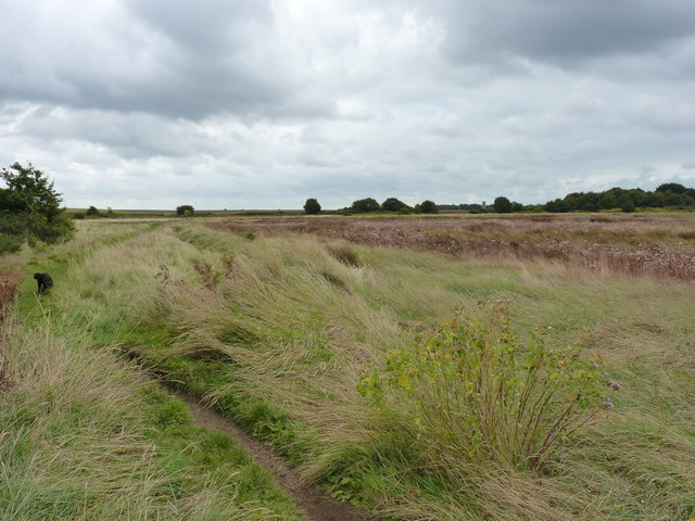 Footpath on the south side of Snape Warren