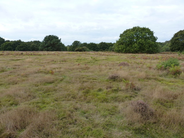Open land on Snape Warren
