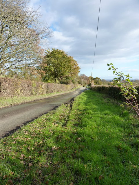 Roman Road on Hargrave Bank