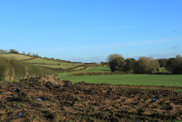 2012 : Combo muck heap and mud pile