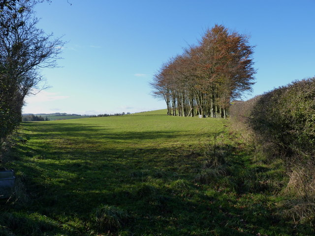 Above Monksfields Farm