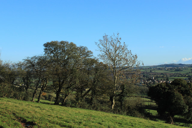2012 : South east from a stile on Norton Lane
